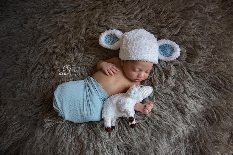 Newborn Lamb Hat with Matching Plush Toy FREE Crochet Pattern