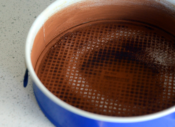 Cocoa-Dusted Springform Pan