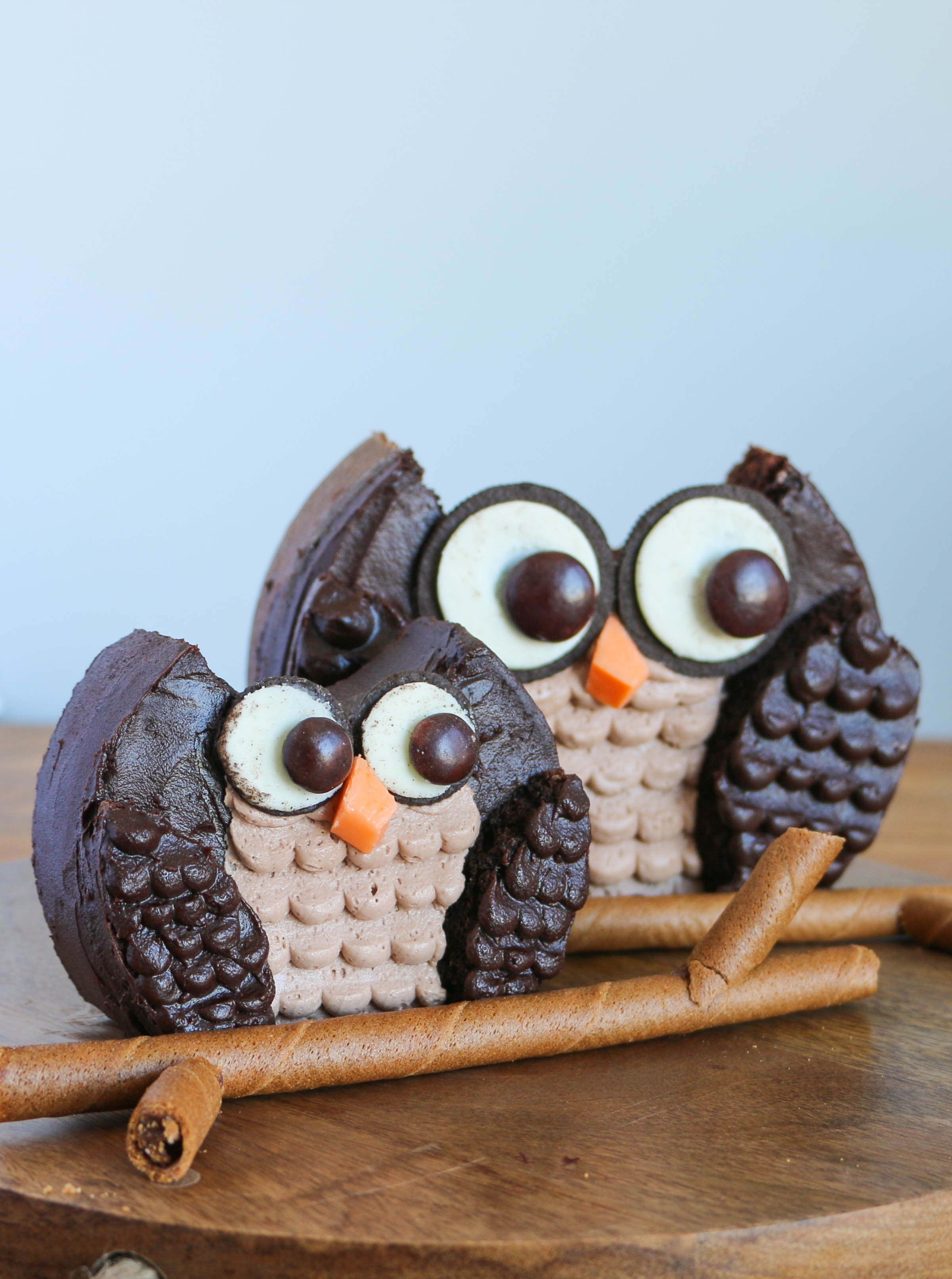 How to make an owl cake | Erin Gardner | Craftsy