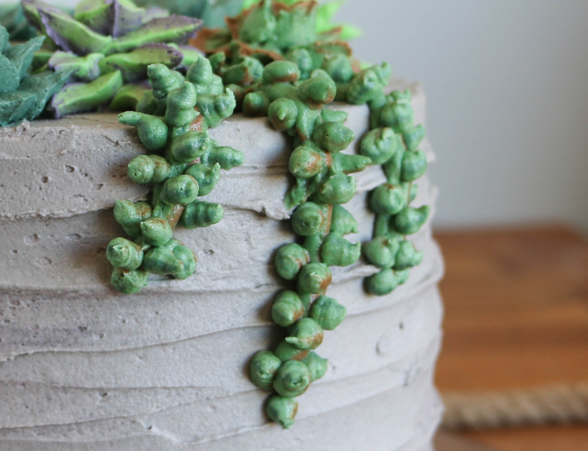 Finished succulent ropes | Erin Gardner | Bluprint