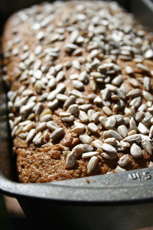 Avocado seed in bread