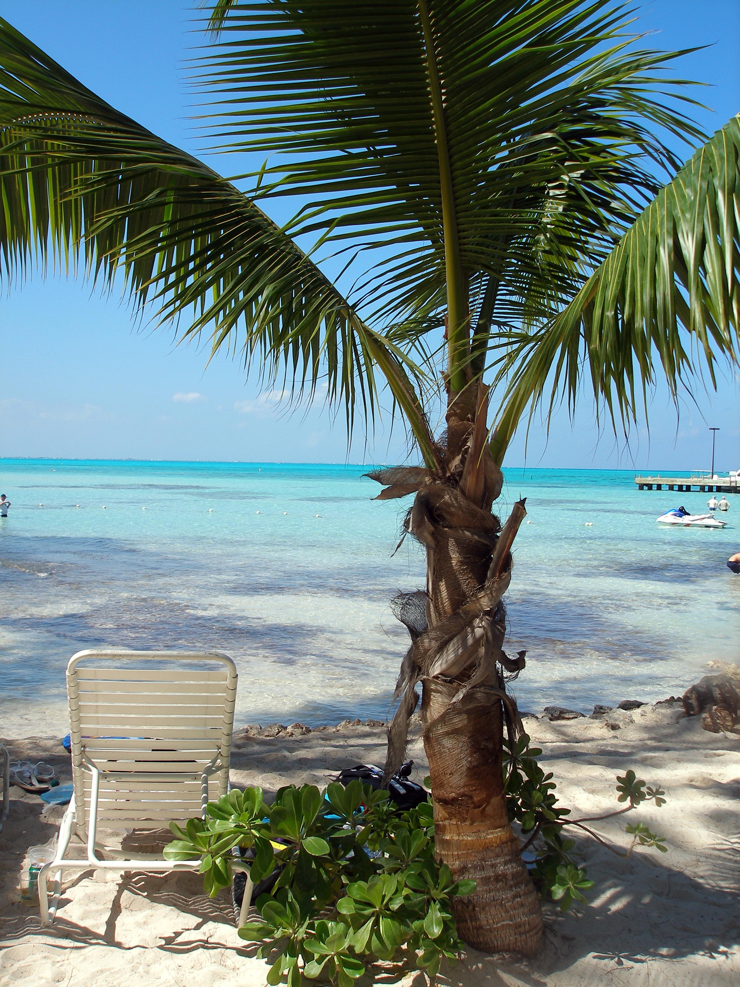 The Beach in Cayman Islands