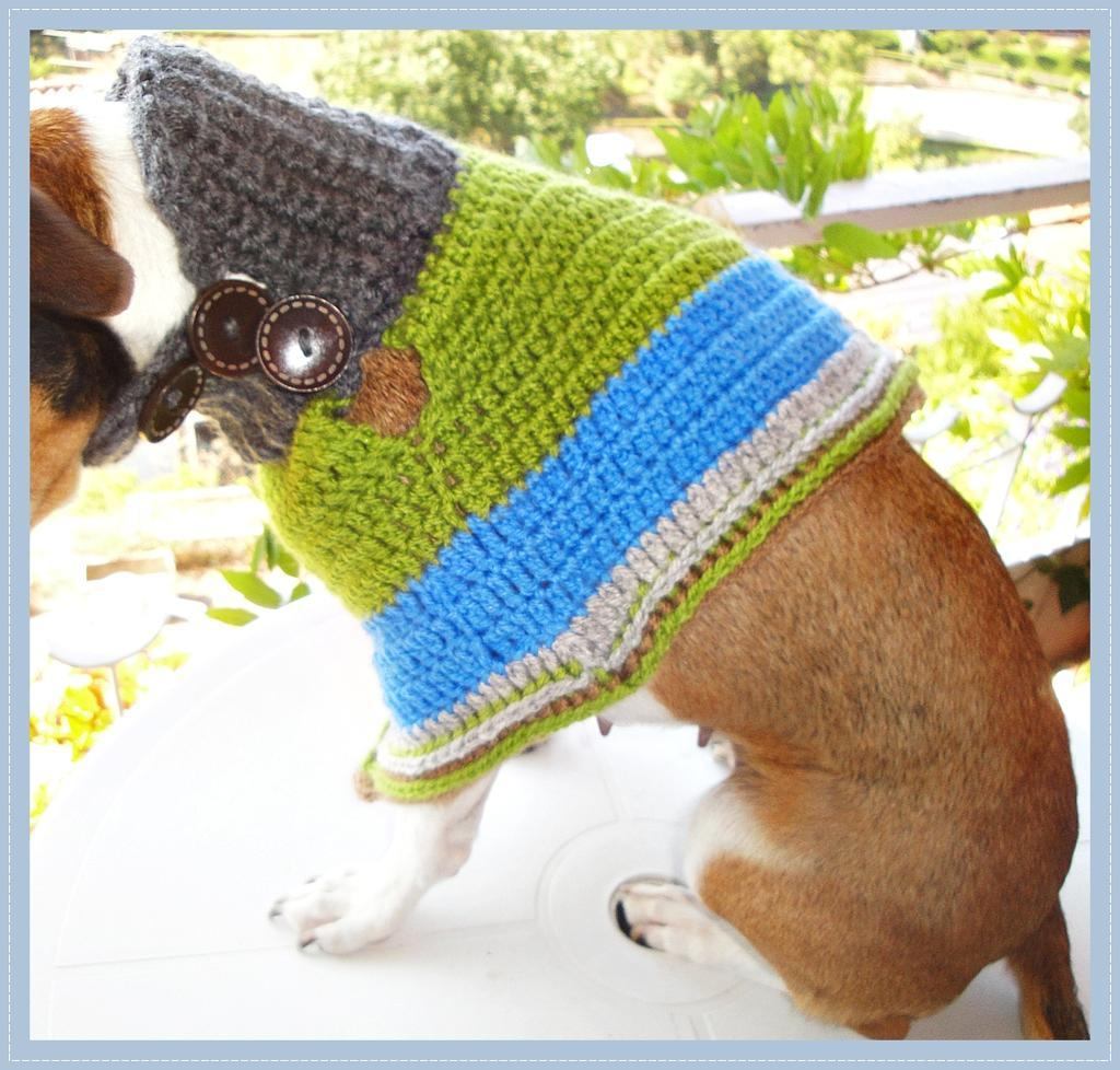 Dog Poncho Crochet Pattern