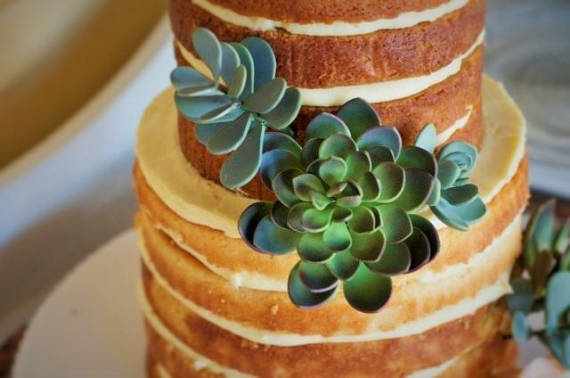 Succulent naked cake by Bluprint member SweetWhisk
