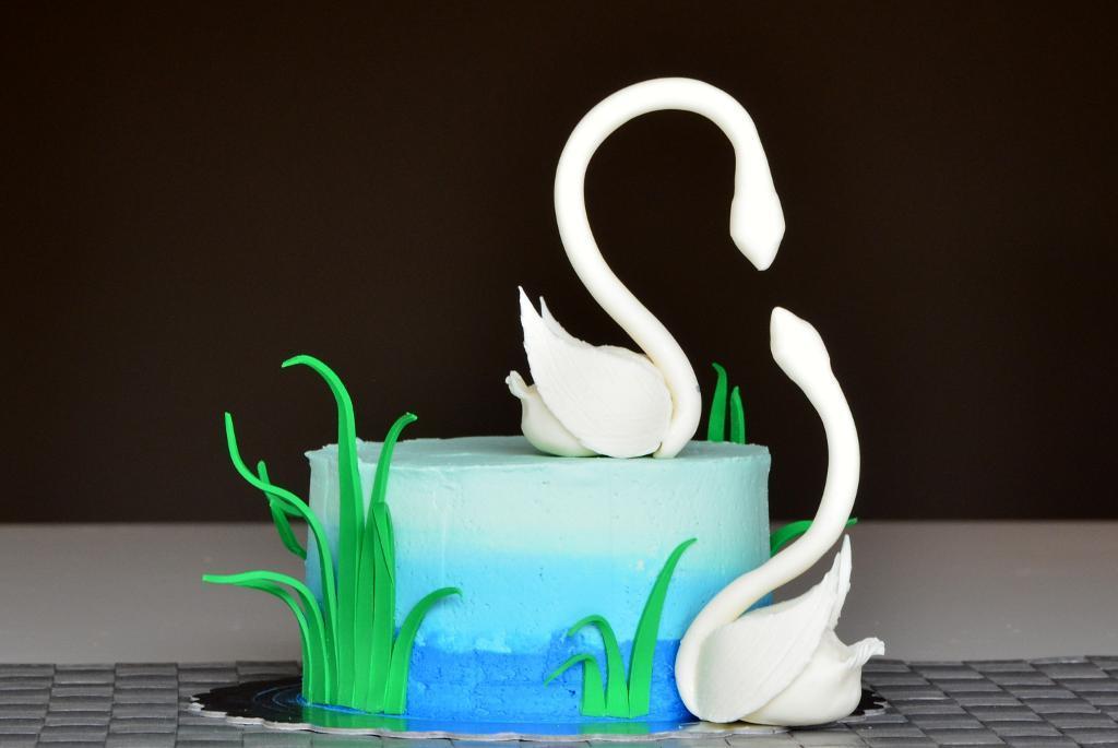 Cake by Supria Vaidya | Erin Gardner