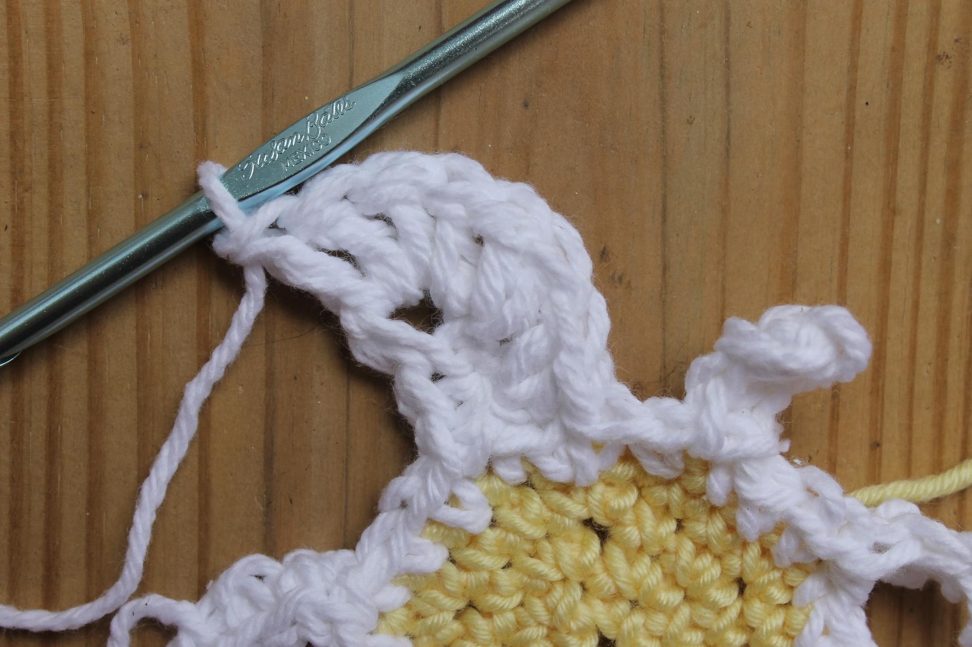 Crochet daisy white petals