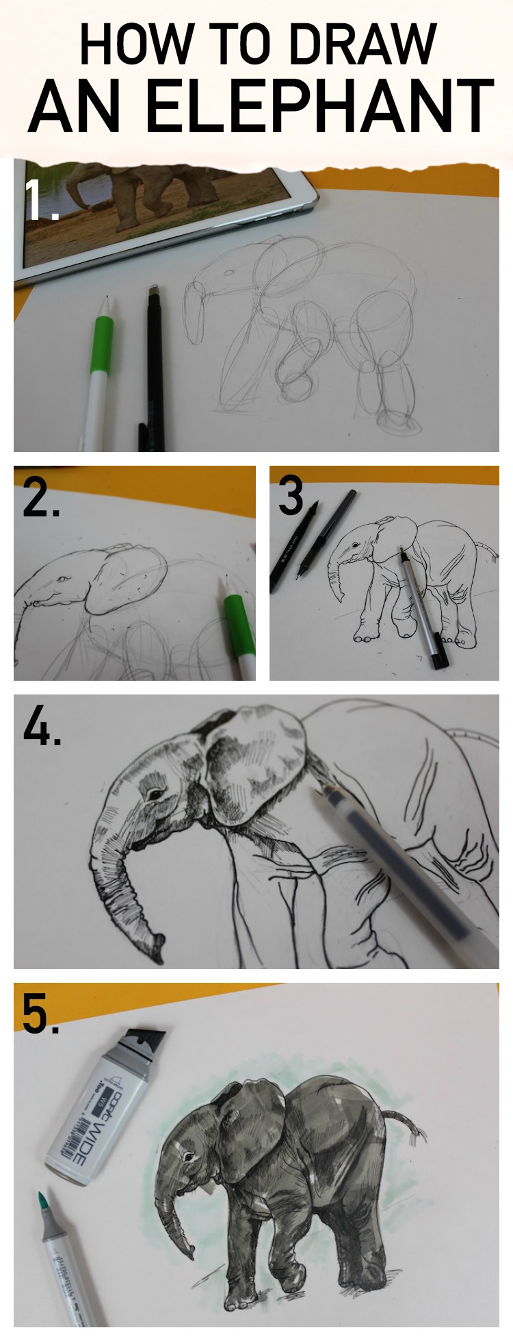 Learn how to draw an elephant with Bluprint's step-by-step tutorial