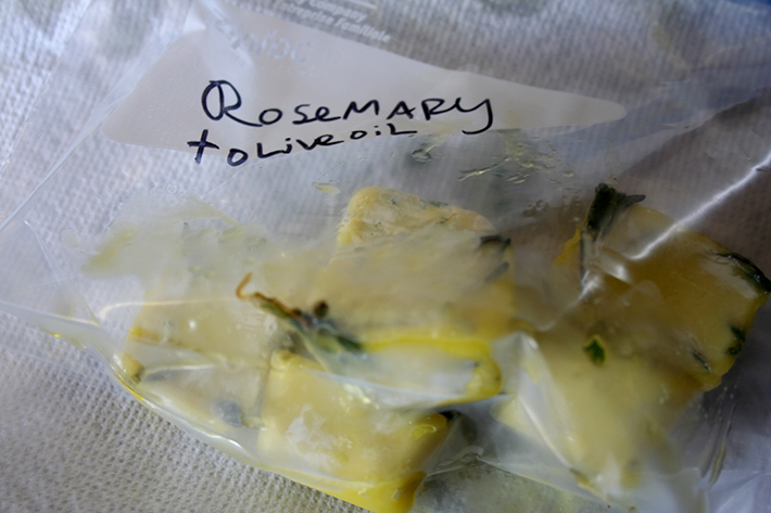 Herb and oil cubes in a storage bag