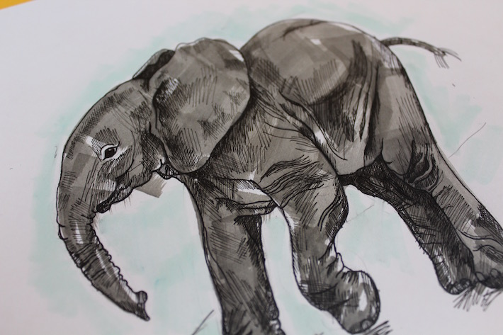 Finished elephant drawing with marker