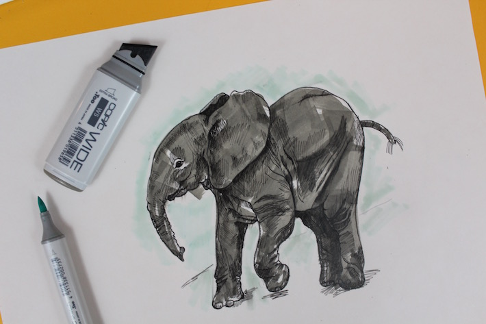 Learn how to draw an elephant on Bluprint!