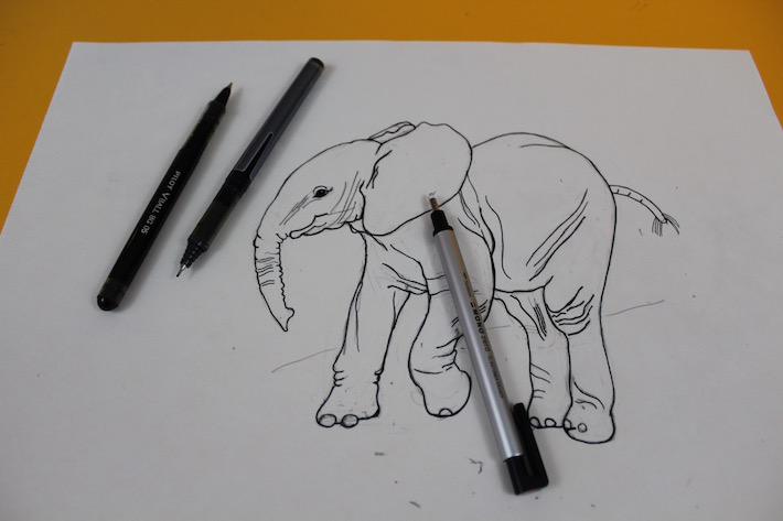 Elephant drawing outlined in pen