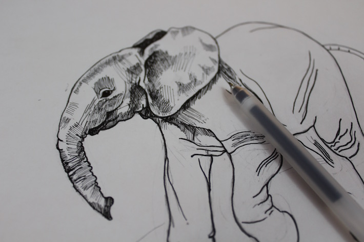 Elephant shading with a fine pen