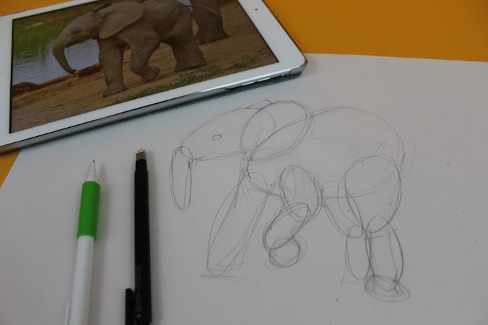 Simple shapes for drawing