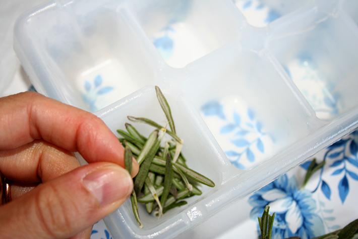 Fresh Herbs in an Ice Cub Tray