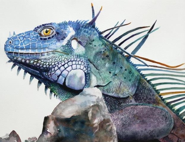 Watercolor Iguana Painting