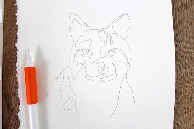 Abstract Cat Sketch