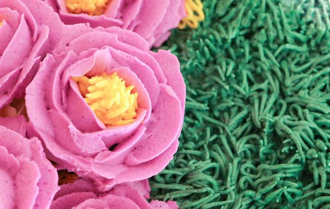 Using a Grass Tip to Pipe a Buttercream Flower Center   Erin Gardner   Bluprint