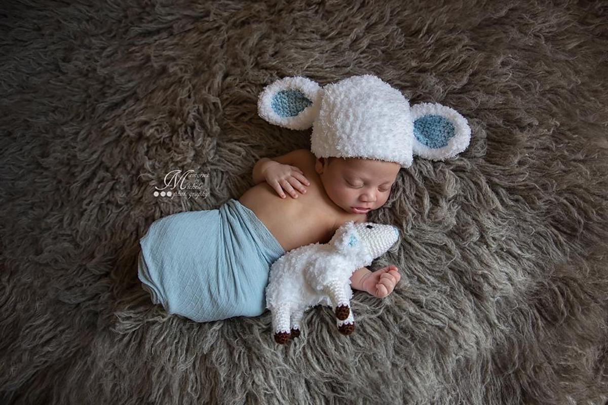 Newborn Lamb Hat and Toy Crochet Pattern