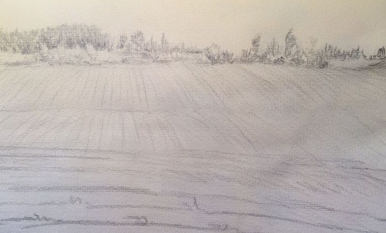 Sketch of Cornfield Landscape