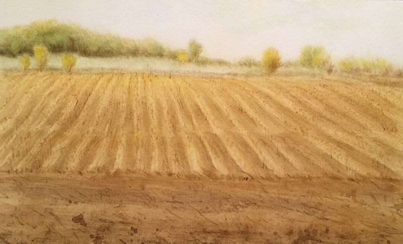 Detailed Cornfield Landscape Painting