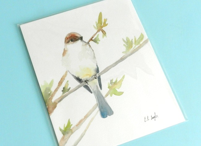 packaged bird painting
