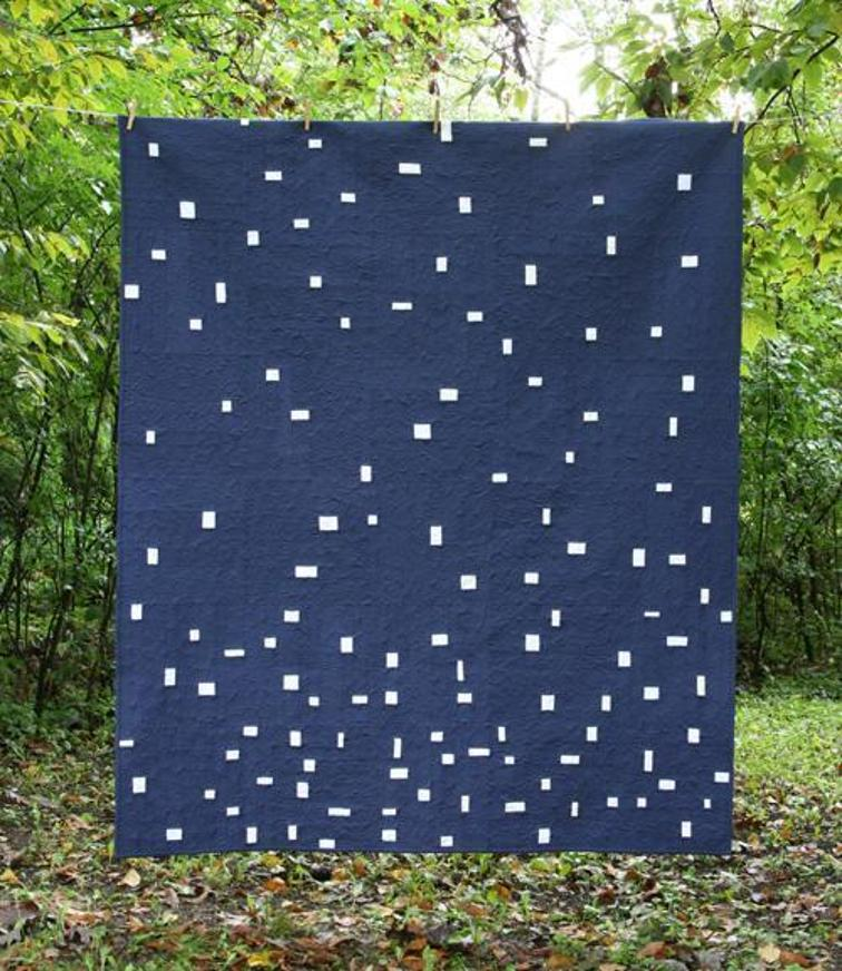 Scattered Showers quilt - two color quilts