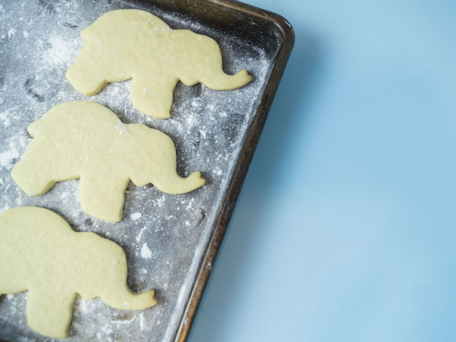 Elephant Sugar Cookies