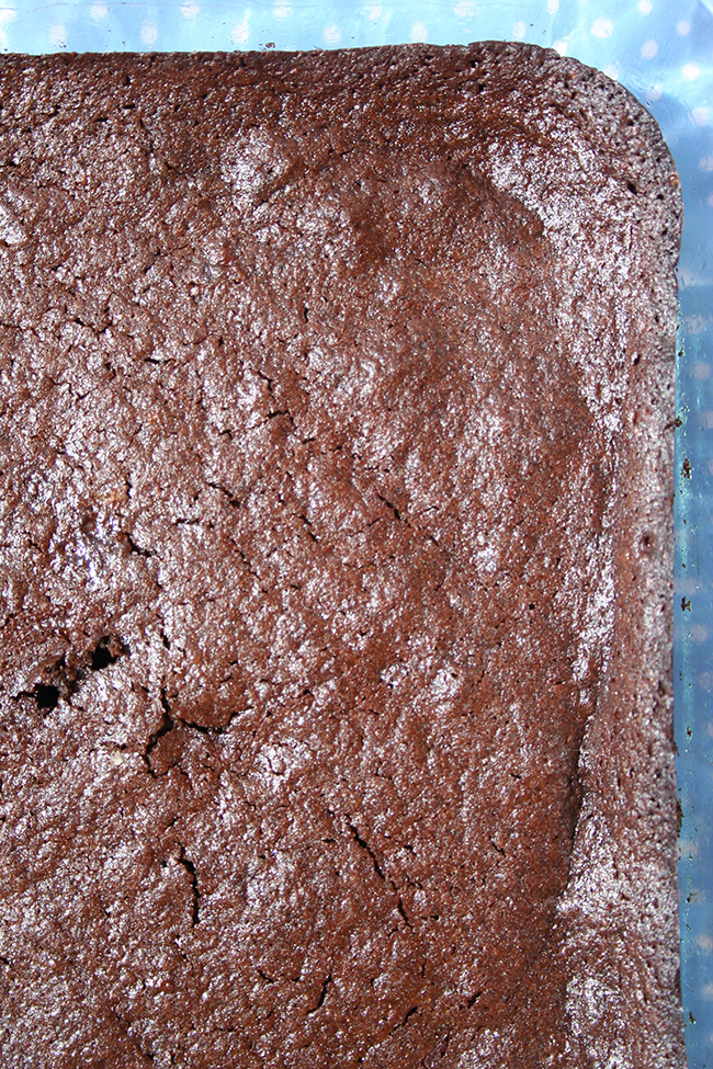 Just baked almond flour brownies