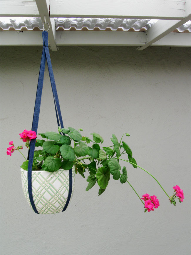 hanging plant holder vertical view