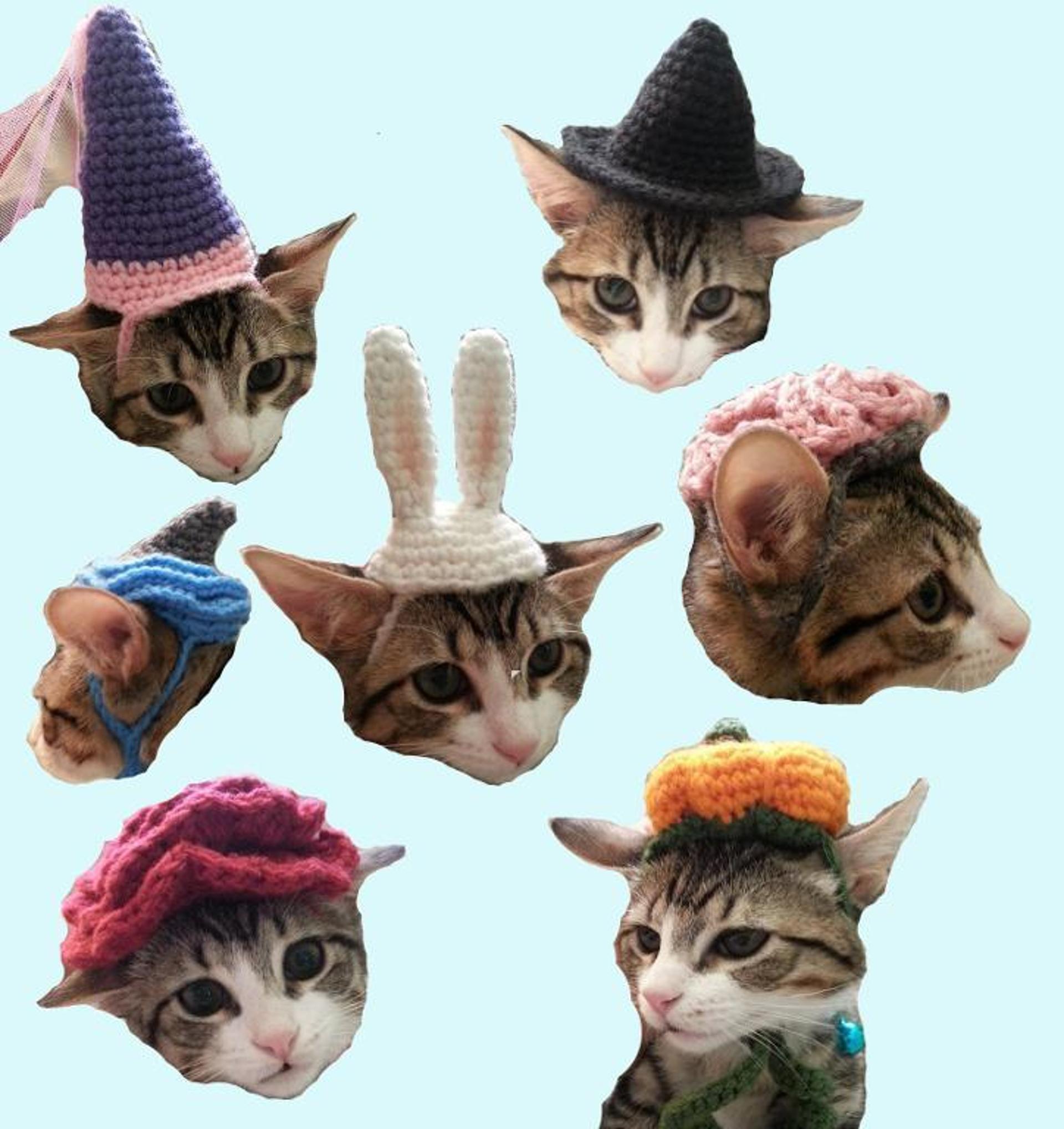 cat hat crochet patterns