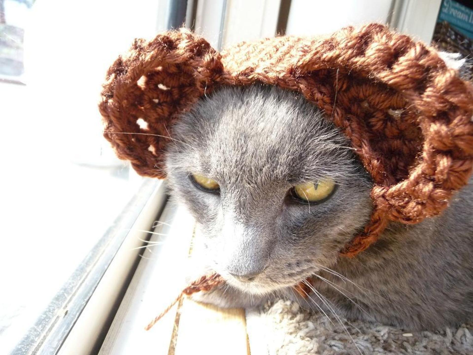 crochet bear ears cat hat