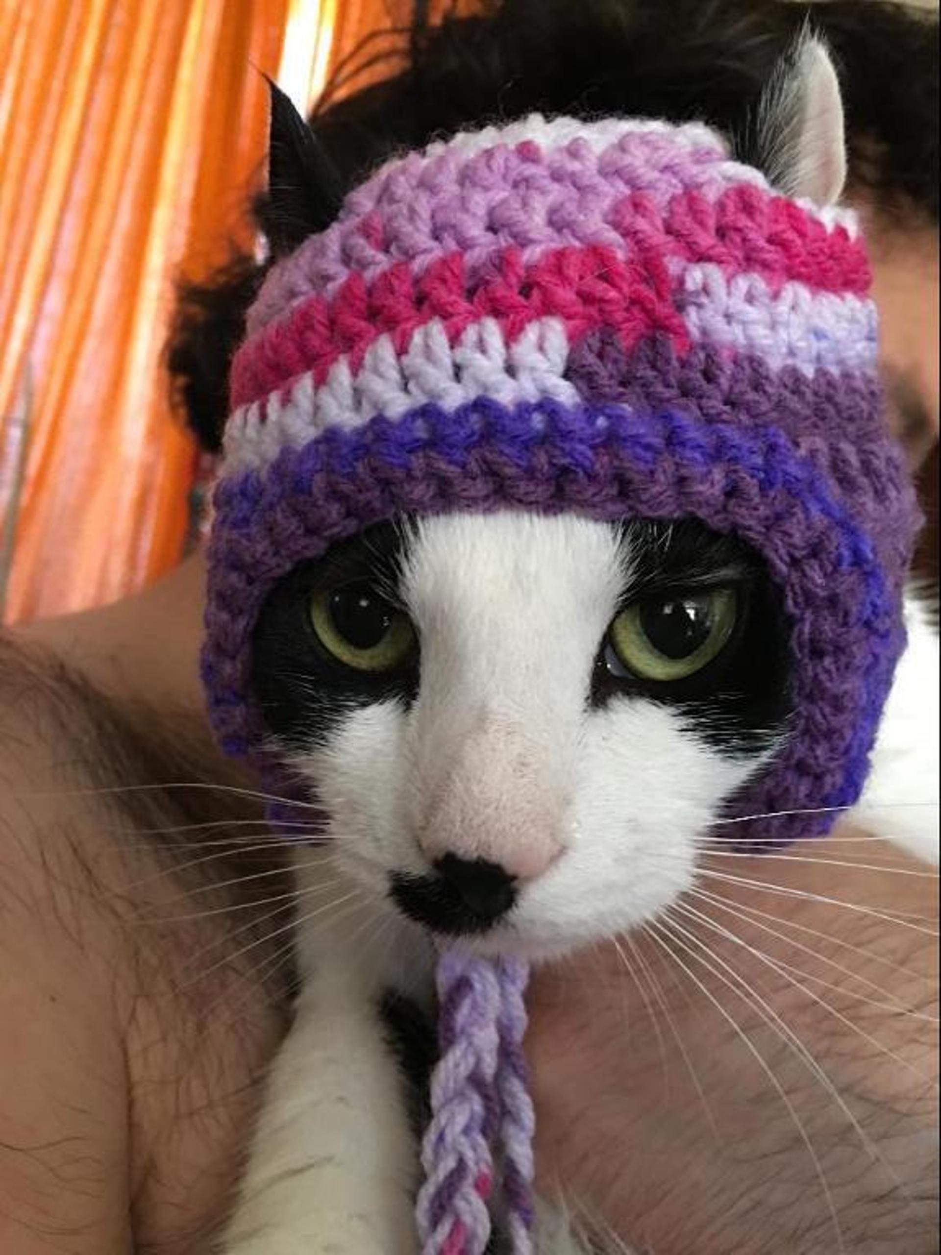 quick crochet cat hat pattern