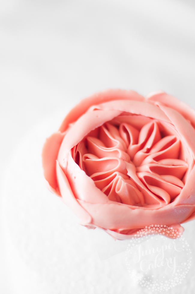 Step by step tutorial for a buttercream Juliet rose