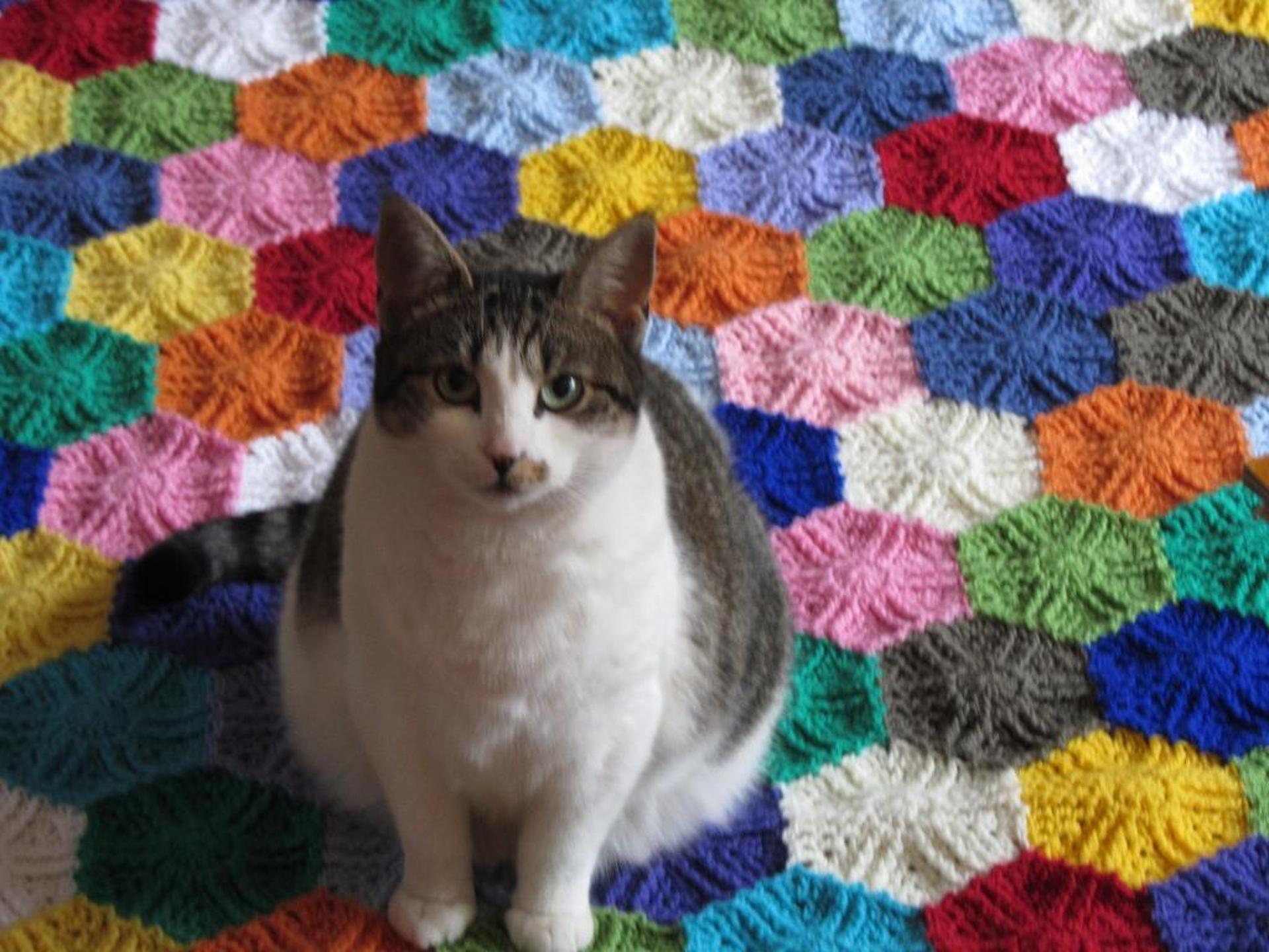 hidden triangles blanket crochet pattern