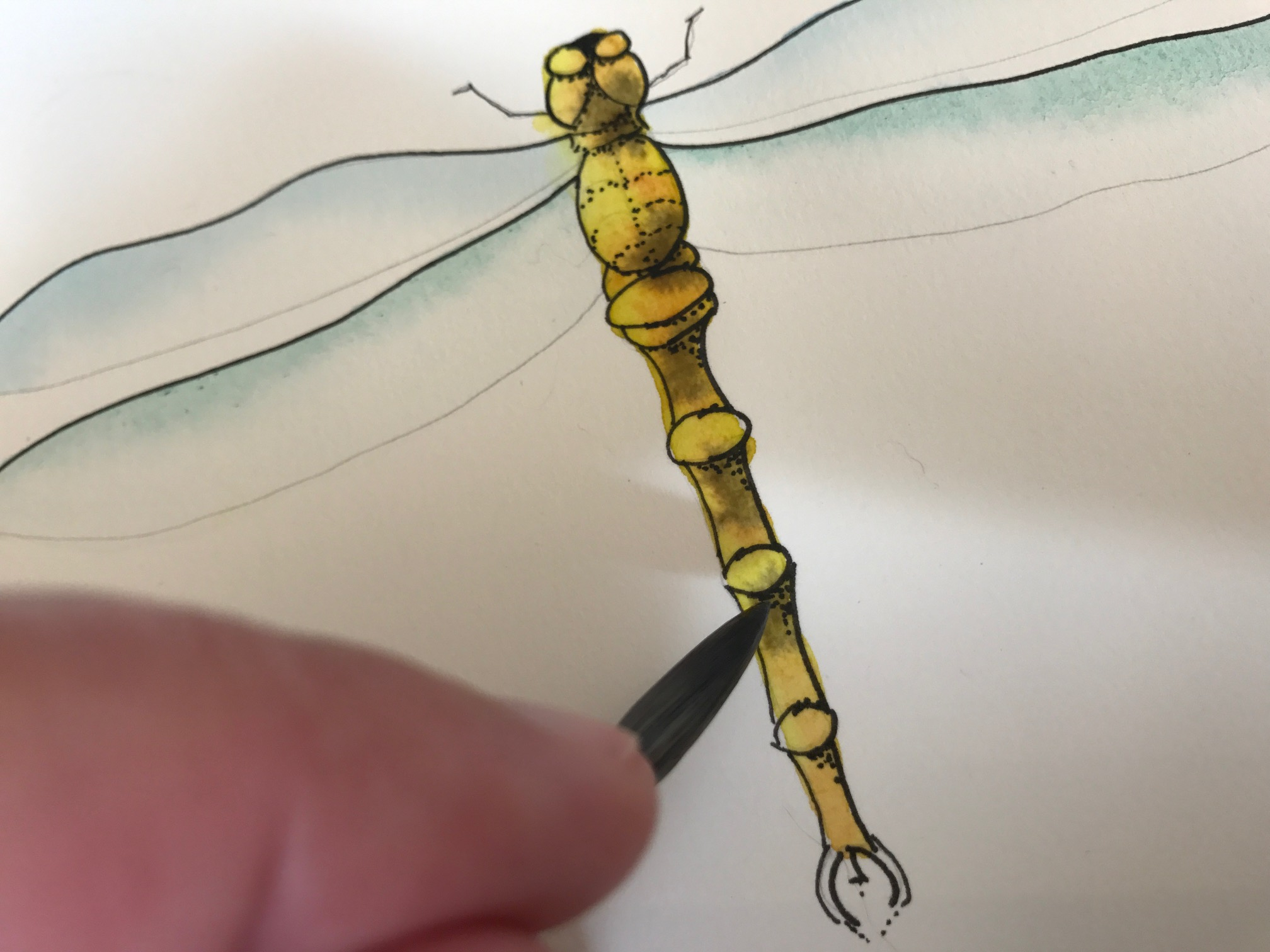 painting the body of dragonfly