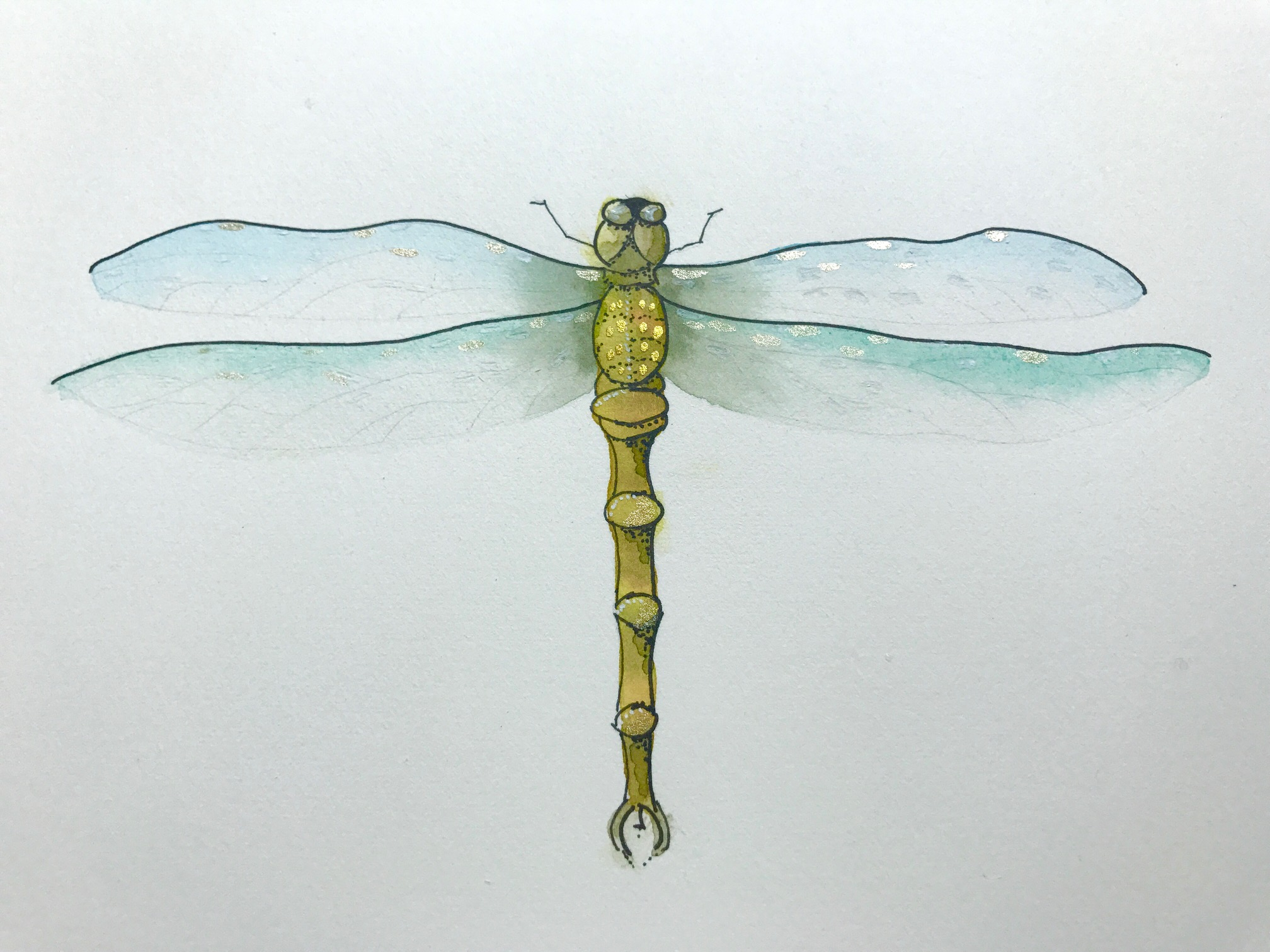 finished dragonfly watercolor painting