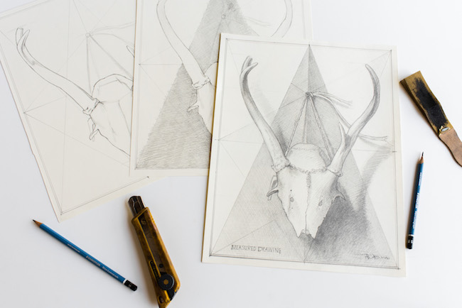 Three Drawings of a Skull