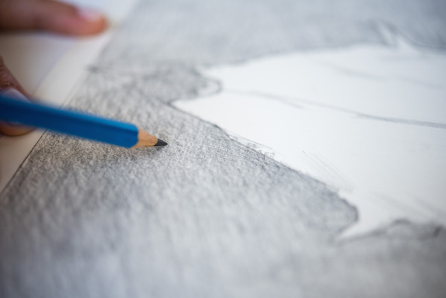 Close Up Pencil Drawing