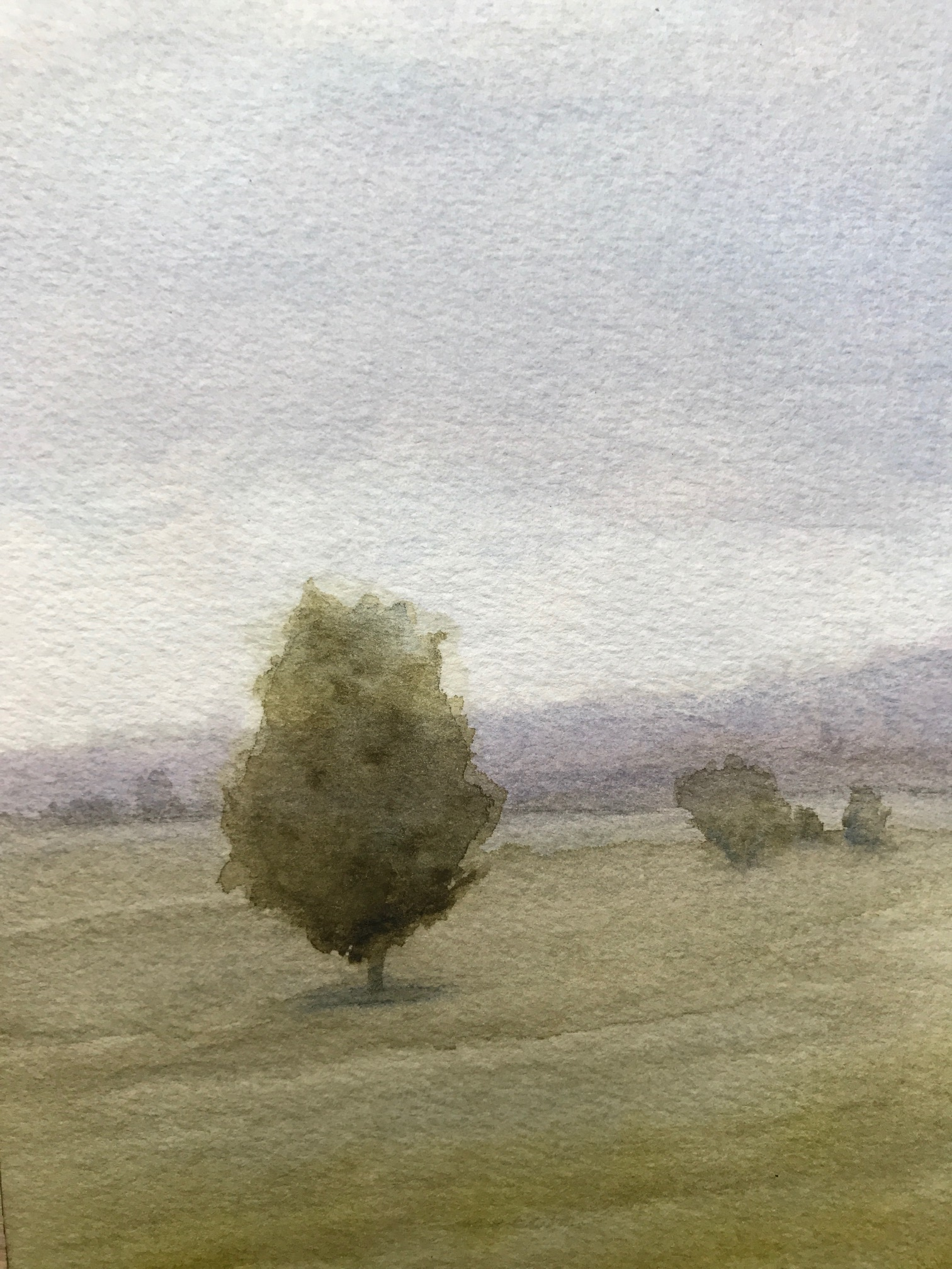 Landscape Painting with Gray Sky