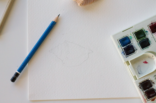Basic shell drawing