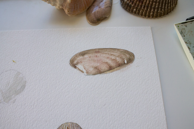 Sea shell painting