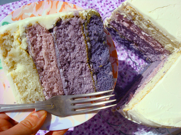Beautiful Purple Ombre Cake Slice