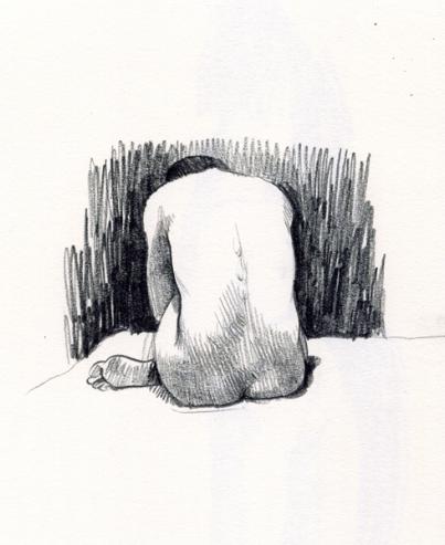 sketch body