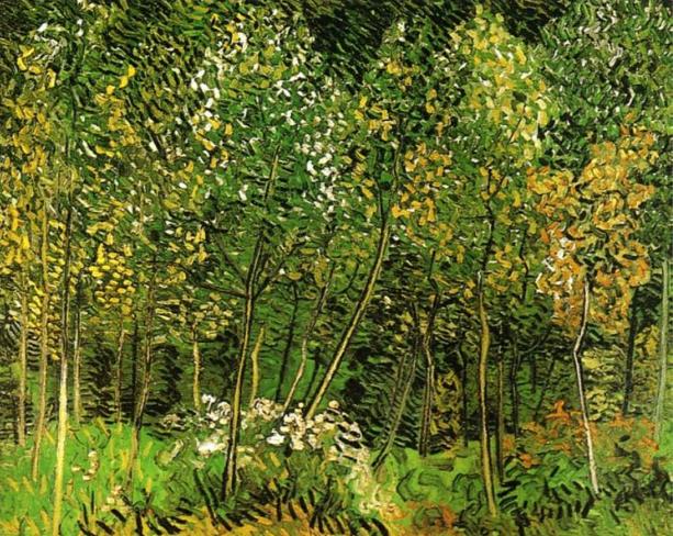 Jackson Pollock: Trees