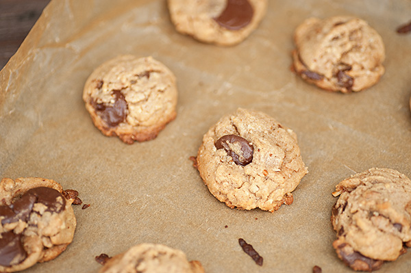 Multiple Chocolate Chip Cookies on Cookie Sheet