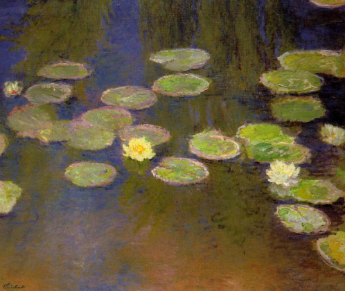 Close Up of Monet Water Lilies