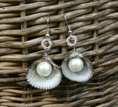 Jewelry Shell Pattern