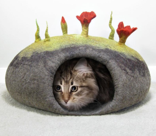 Cat Peeking Head Out of Cat Cave