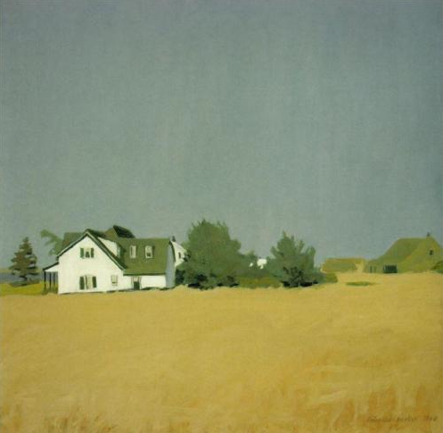 Painting Field