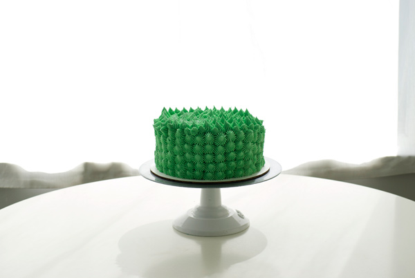Piped Cactus Cake